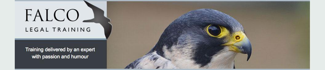 falco-ltl responsive website by Pynto